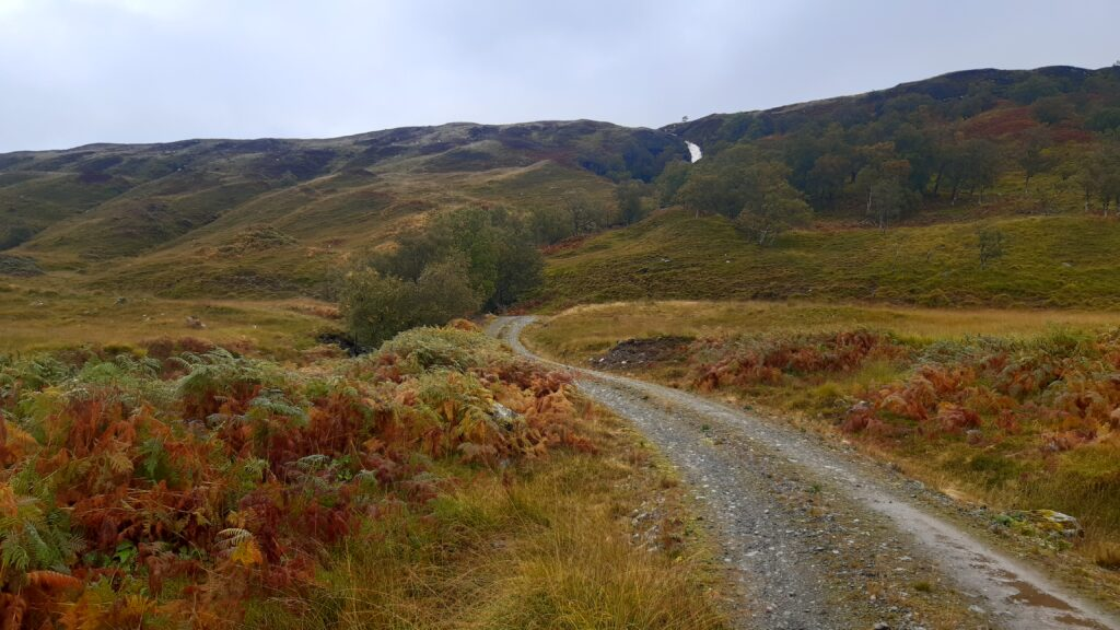 Nice trail, lovely colours, lots of water