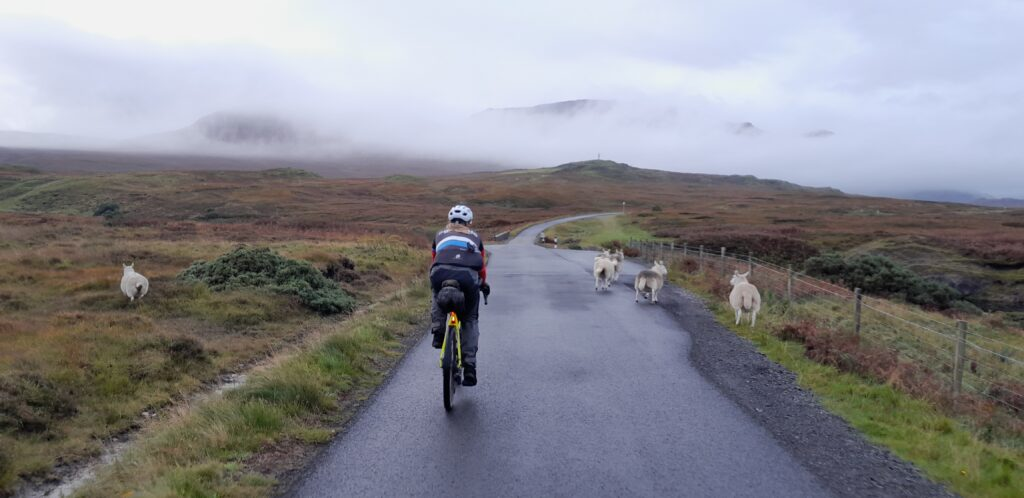 Highland traffic